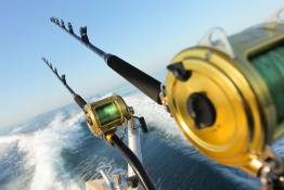 footy trip fishing charter