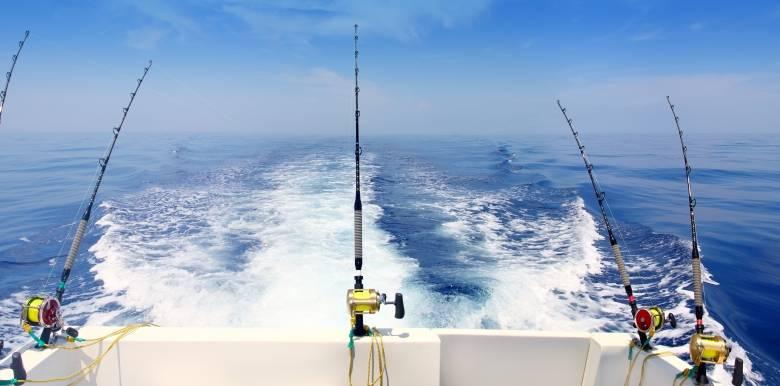 cairns fishing charter