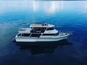 Brisbane Bucks Party Cruise Charter
