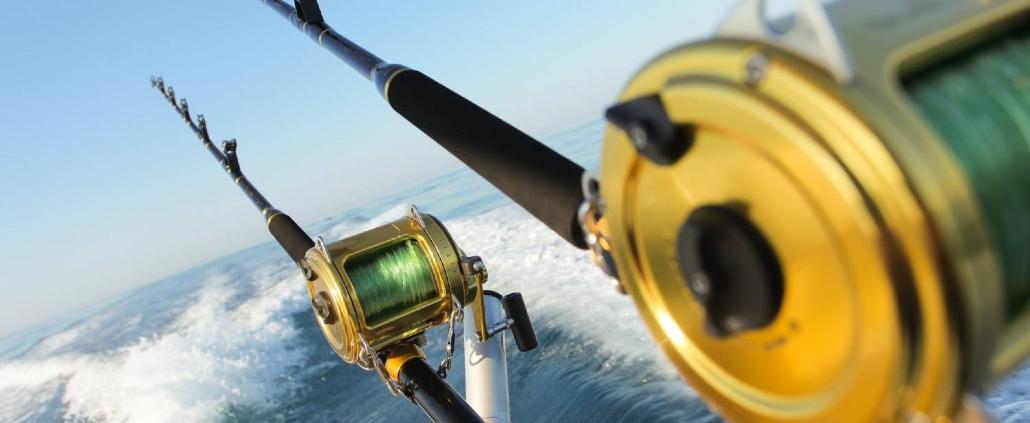 Perth Bucks Deep Sea Private Half Day Fishing Charter